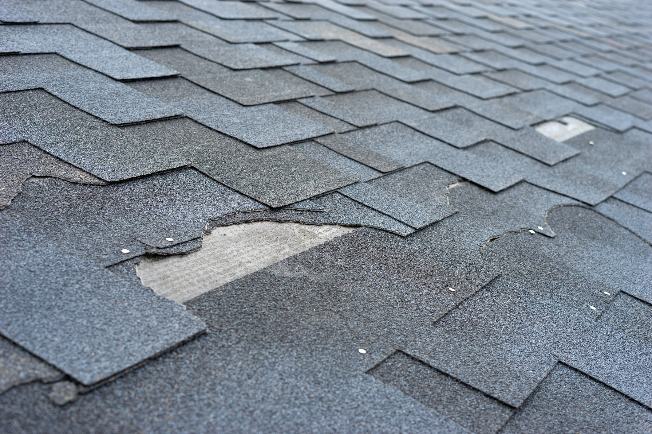 Сlose Up View Of Asphalt Shingles Roof Damage That Needs Repair